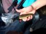 Utsett av fisk i Mågevann